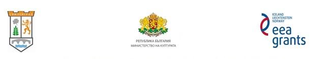 logo stariq most