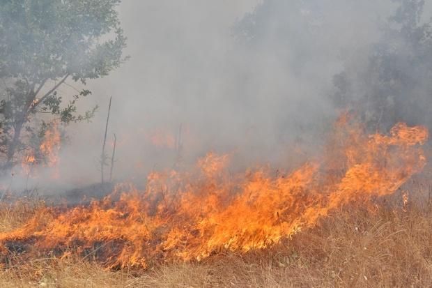 Предупреждават за екстремен риск от пожари в Хасковско