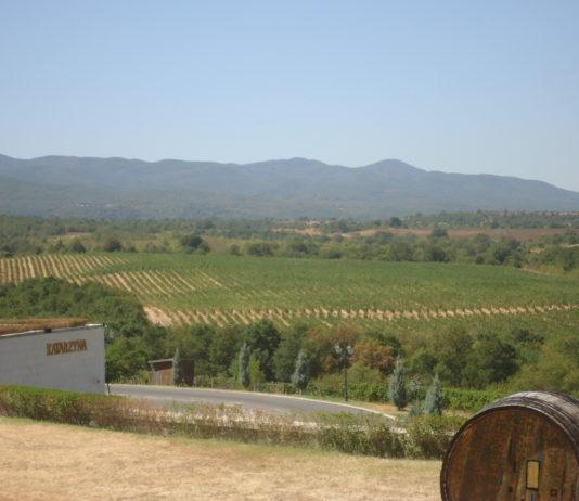 """Вино на """"Катаржина"""" спечели приза """"Най-добро българско вино"""" (""""Best of Show"""") на един от трите най-престижни световни конкурси за вино – Mundus Vini Summer Tasting 2021."""