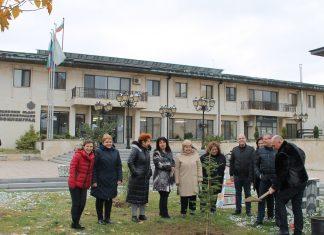 Кметът на Свиленград Георги Манолов засади кедър пред общината. Дървото е подарък от екипа му за 14 години от стъпването му в длъжност