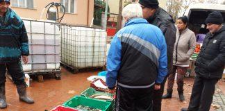 Шаран и толстолоб са най-купуваните риби за Никулден в Свиленград